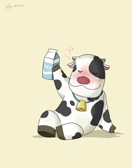 วัวเมา